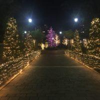 アメリカ山公園のイルミネーションの感想とクリスマスの混雑予想
