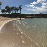 ハワイは冬でも泳げる?寒い?観光のおすすめは?