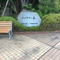 ジョイナス屋上、ジョイナスの森彫刻公園へ行ってみた!行き方も紹介!